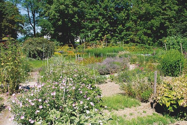 Garten © Schloss Wartegg.jpg