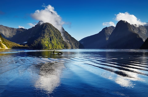 The spectacular natural landscape of New Zealand