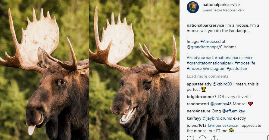 Instagram Offers Visual Allure, and the Travel Industry Wants In