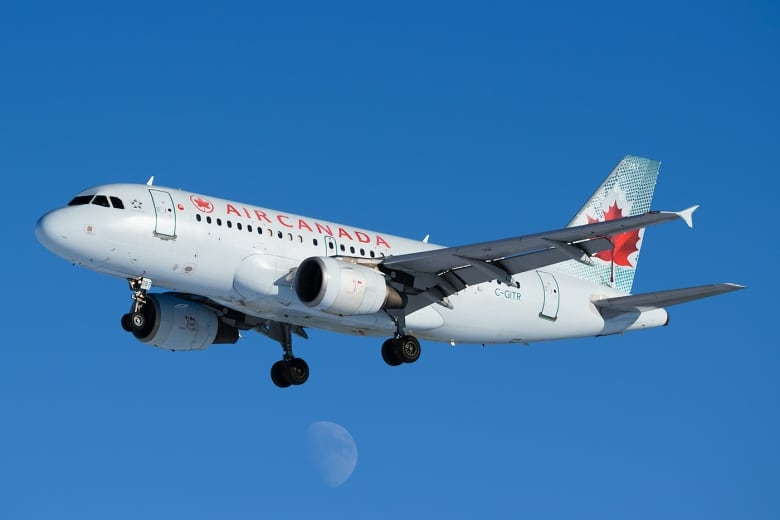 Delayed, cancelled flights cause headaches for Fredericton travellers