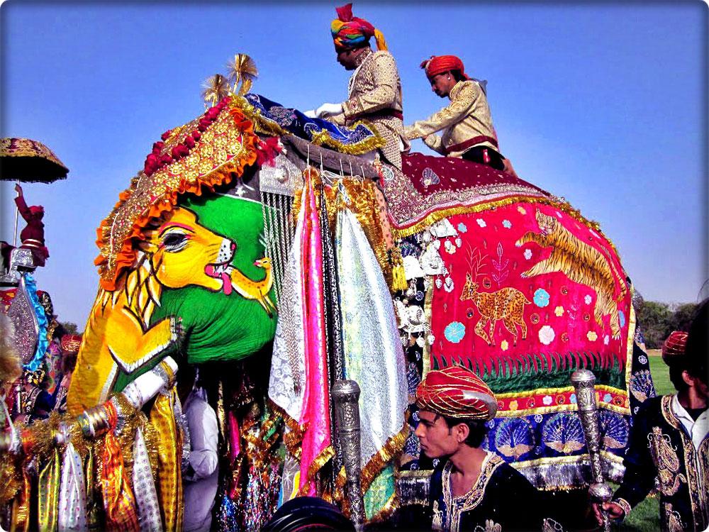 Elephant Festival Holi Jaipur