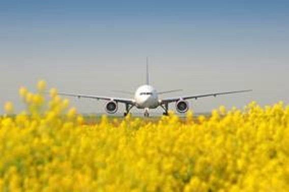 , Summer Schedule 2019: Frankfurt Airport puts spring in its step, World News | forimmediaterelease.net