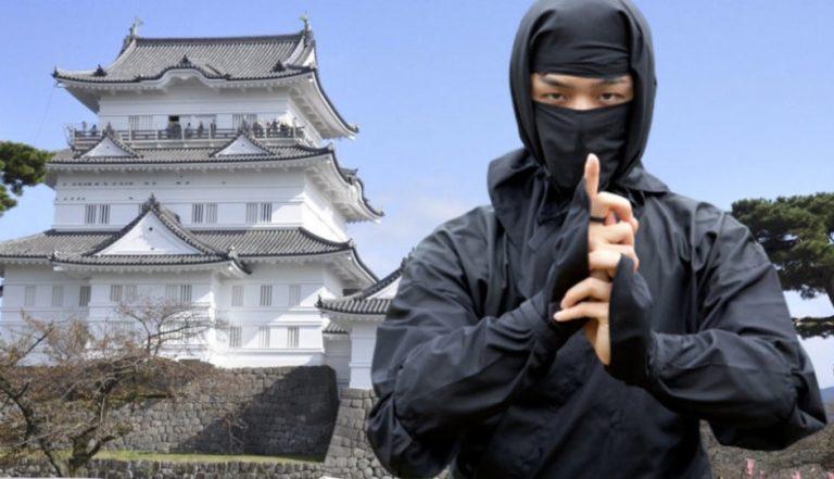 , Ninja Museum to open in Odawara Castle Park, World News | forimmediaterelease.net